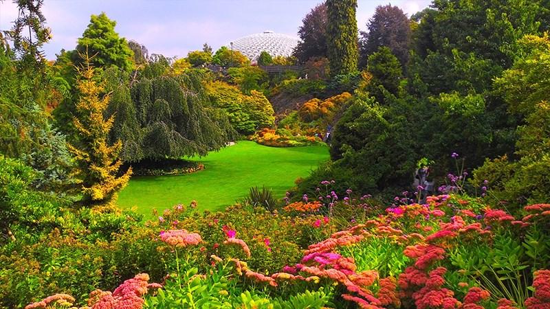 Hình nền vườn hoa tươi đẹp mùa xuân - 8 (Kích thước: 1920 x 1080)