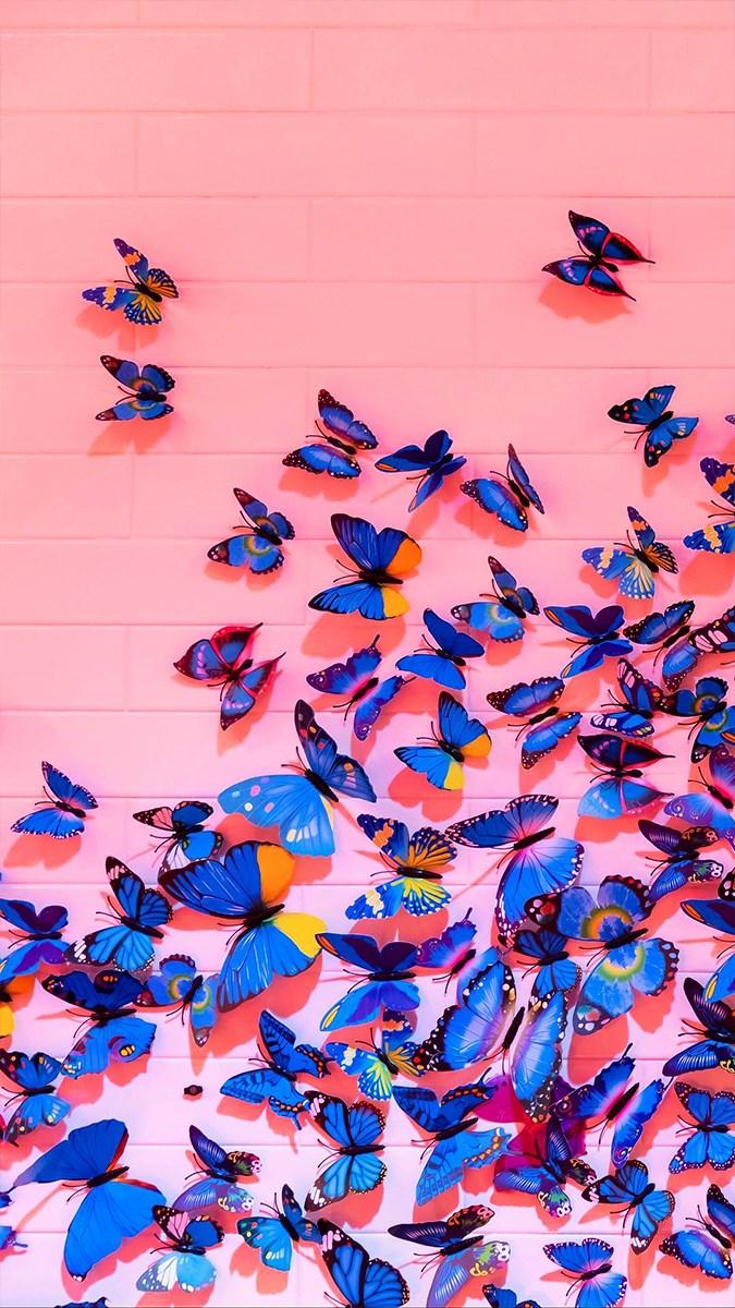 Hình nền bươm bướm - 15 (Kích thước: 1080 x 1920)