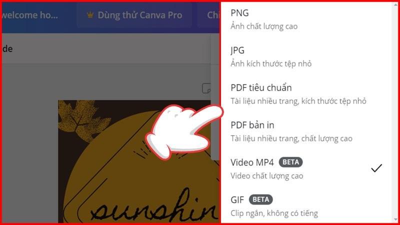 Lựa chọn Loại tệp phù hợp hình ảnh nhấn tiếp Enter để hoàn thành quá trình