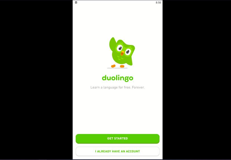 Hướng dẫn tải, cài đặt Duolingo về máy tính