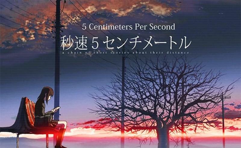Poster 5 cm/s
