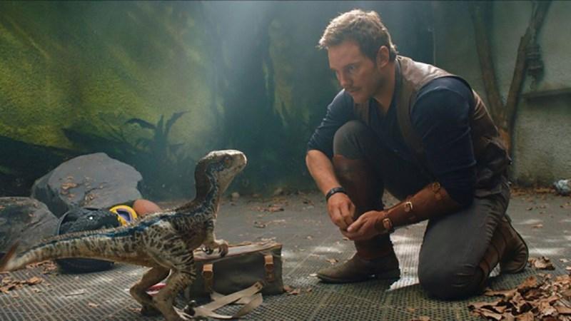 Nam chính trong Jurassic World: Fallen Kingdom