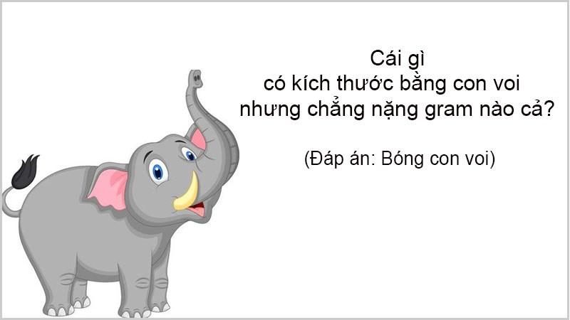 Cái gì có kích thước bằng con voi nhưng chẳng nặng gram nào cả?