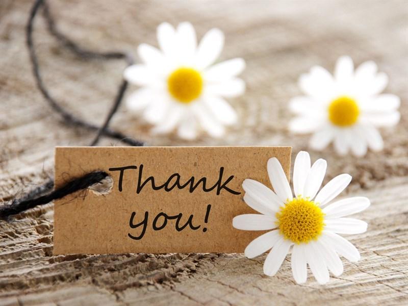 Ảnh cảm ơn kèm những bông hoa trắng