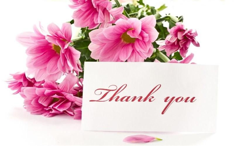 Ảnh cảm ơn kèm những bông hoa hông xinh xắn