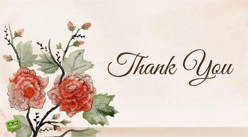 Ảnh cảm ơn với những nét bút nghệ thuật và những đóa hoa tươi thắm