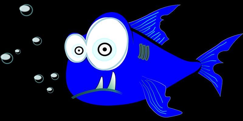 Hài hước, thú vị với những chú cá hoạt hình