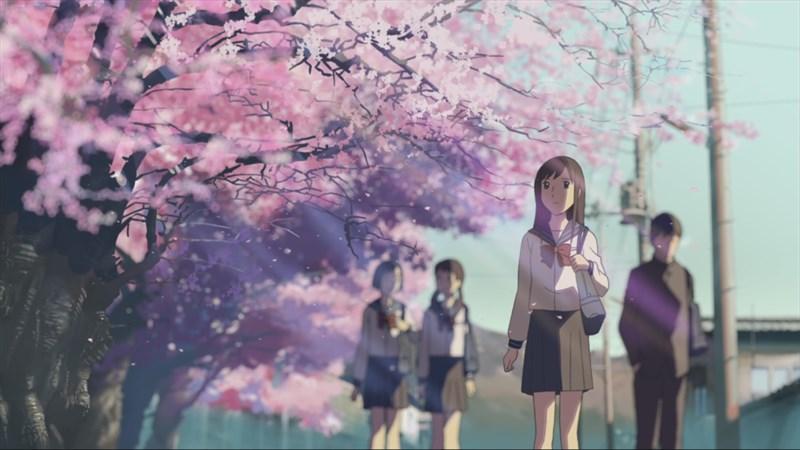 Ảnh nền hoa anh đào trong anime - 3 (Kích thước: 1920 x 1080)