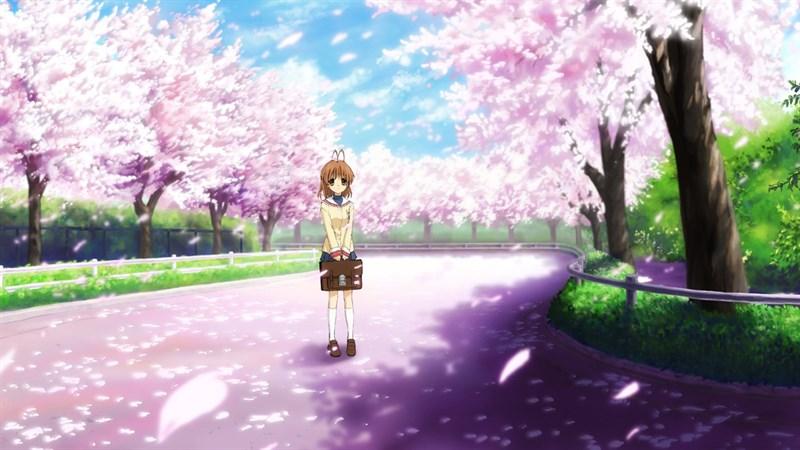 Ảnh nền hoa anh đào trong anime - 4 (Kích thước: 1920 x 1080)