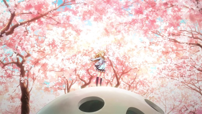 Ảnh nền hoa anh đào trong anime - 6 (Kích thước: 1920 x 1080)