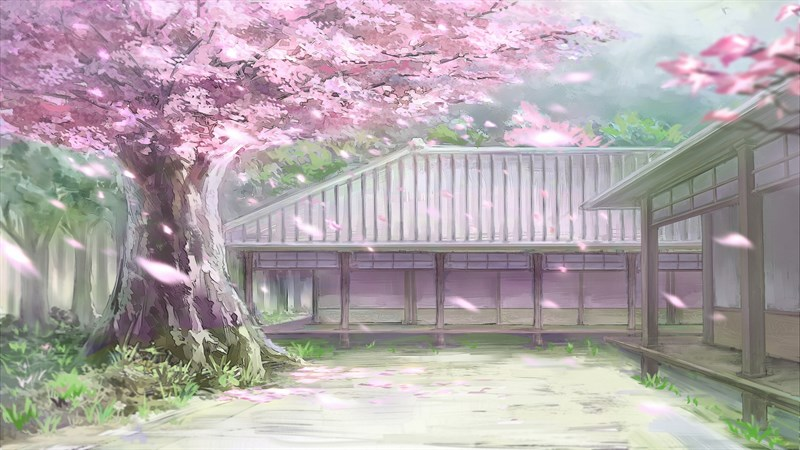 Ảnh nền hoa anh đào trong anime - 7 (Kích thước: 1920 x 1080)
