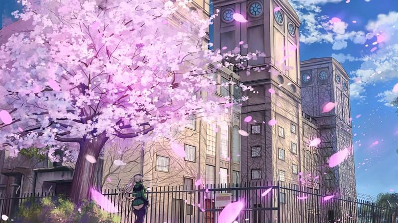 Ảnh nền hoa anh đào trong anime - 9 (Kích thước: 1920 x 1080)