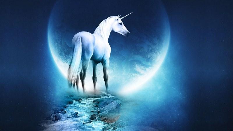 Hình nền Unicorn cute 19 - Kích thước 1920 x 1080