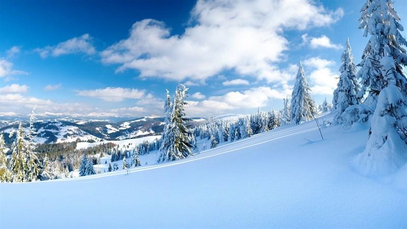 Hình nền bông tuyết, tuyết mùa đông 8 (Kích thước: 1920 x 1080)