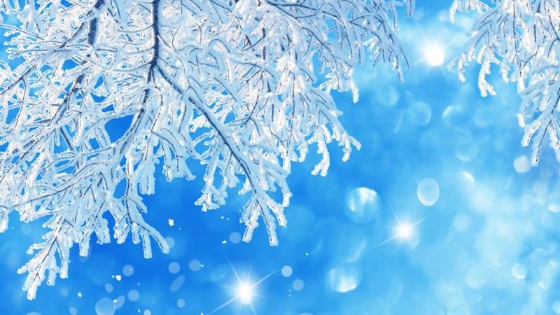 Hình nền bông tuyết, tuyết mùa đông 3 (Kích thước: 1920 x 1080)