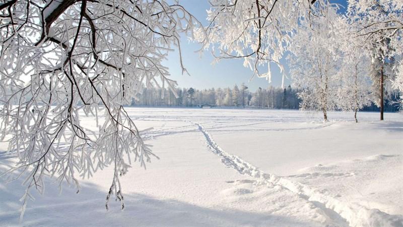 Hình nền bông tuyết, tuyết mùa đông 6 (Kích thước: 1920 x 1080)