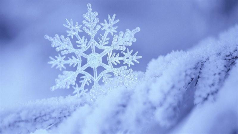 Hình nền bông tuyết, tuyết mùa đông 7 (Kích thước: 1920 x 1080)