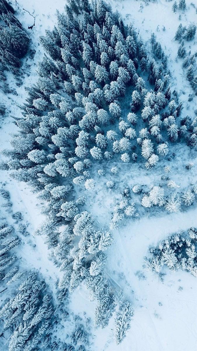 Hình nền mùa đông điện thoại 3 (Kích thước: 1080 x 1920)