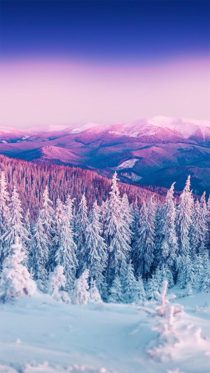 Hình nền mùa đông điện thoại 6 (Kích thước: 1080 x 1920)