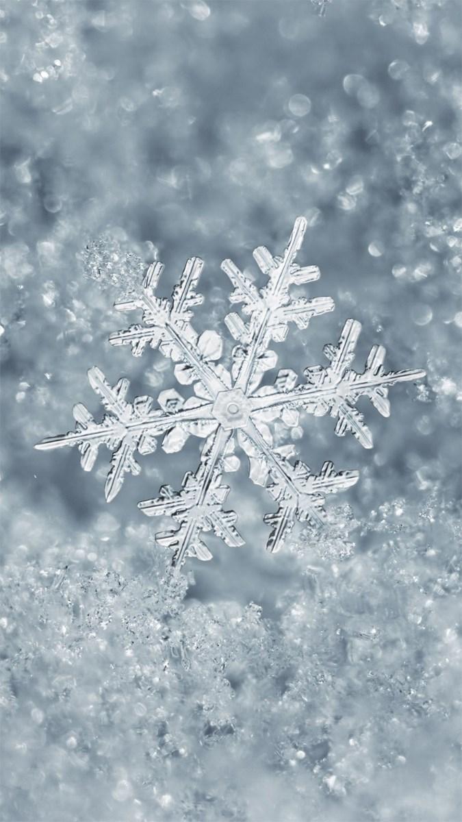 Hình nền mùa đông điện thoại 1 (Kích thước: 1080 x 1920)