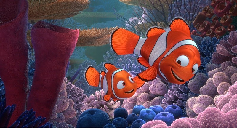 Hai cha con Marlin và Nemo