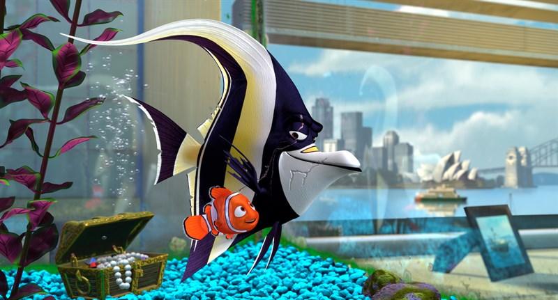 Nemo và chú Gill khi cùng sống trong bể cá