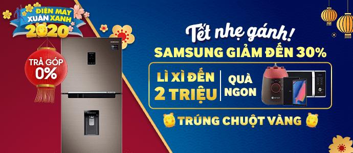 2019 - DE - Samsung tủ lạnh