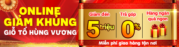 Hot Sale Giỗ tổ