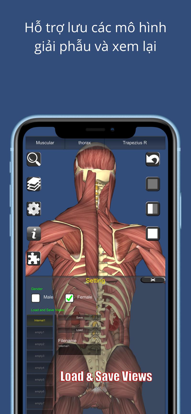 Hỗ trợ lưu các mô hình giải phẫu và xem lại