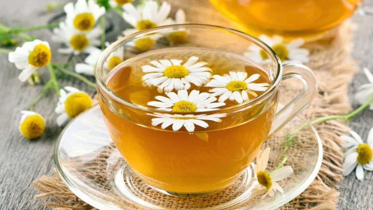 trà hoa cúc uống có tác dụng gì (01)
