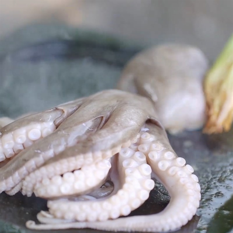 Bước 2 Nướng bạch tuộc Bạch tuộc nướng đá