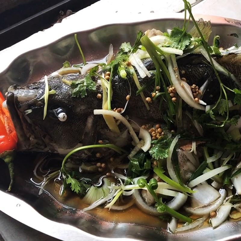 Bước 5 Thành phẩm Cá mú hấp Hồng Kông