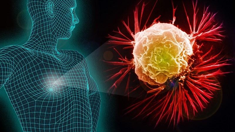 Hỗ trợ ngăn ngừa các bệnh ung thư