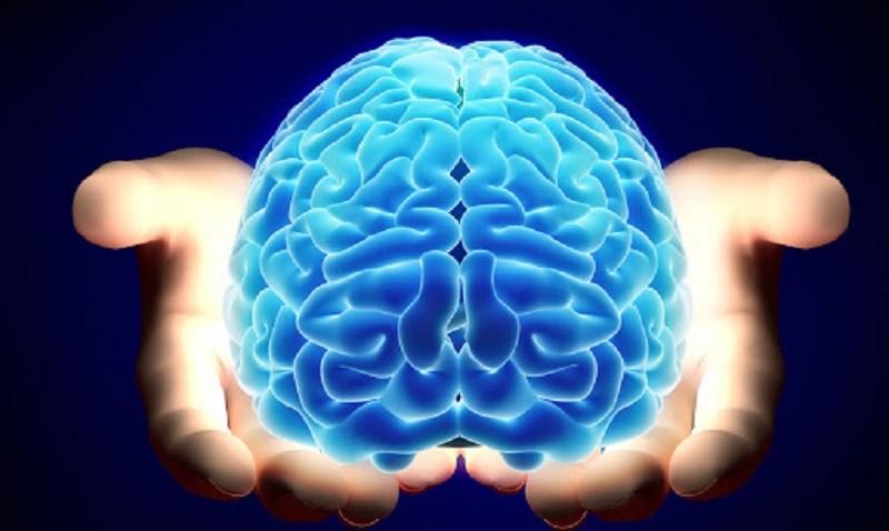 Trà hoa nhài tăng cường chức năng của não bộ