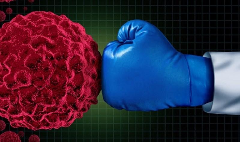 Dầu đậu phộng tăng cường hệ thống miễn dịch