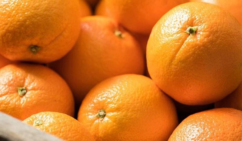 Cam (các loại trái cây cùng họ cam quýt)