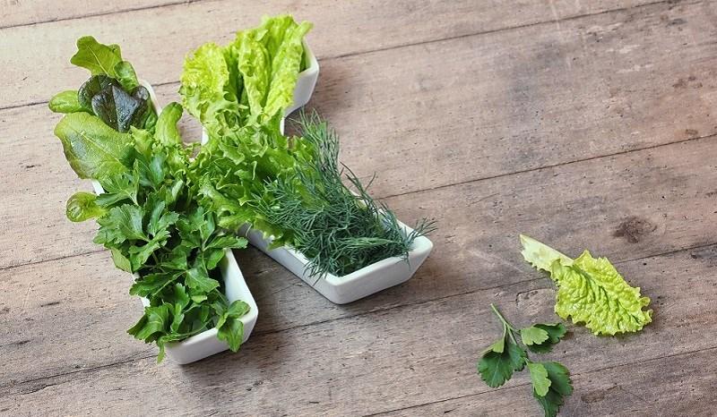 Bắp cải là nguồn cung cấp vitamin K cho dồi giàu