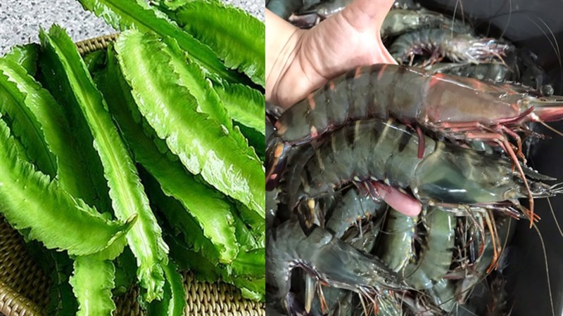 Nguyên liệu món ăn 2 cách làm gỏi đậu rồng tôm và thịt bò