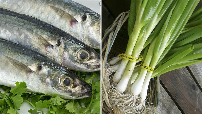 Nguyên liệu món ăn cá nục nướng mỡ hành
