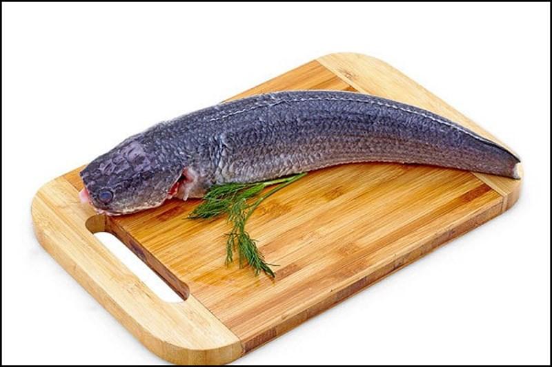 cách làm sạch cá lóc