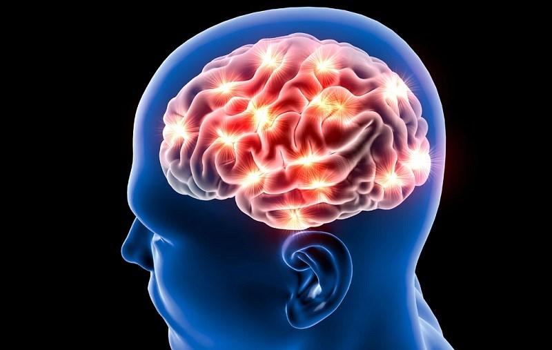 Nghệ cải thiện chức năng não