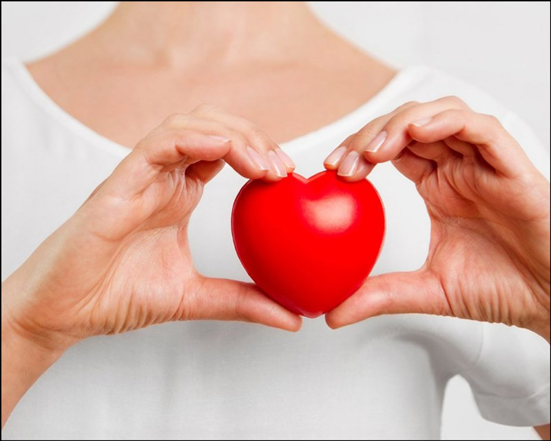 hạt điều giúp cải thiện sức khỏe tim mạch