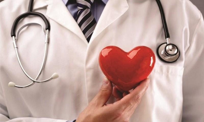 Bí đao tốt cho tim mạch