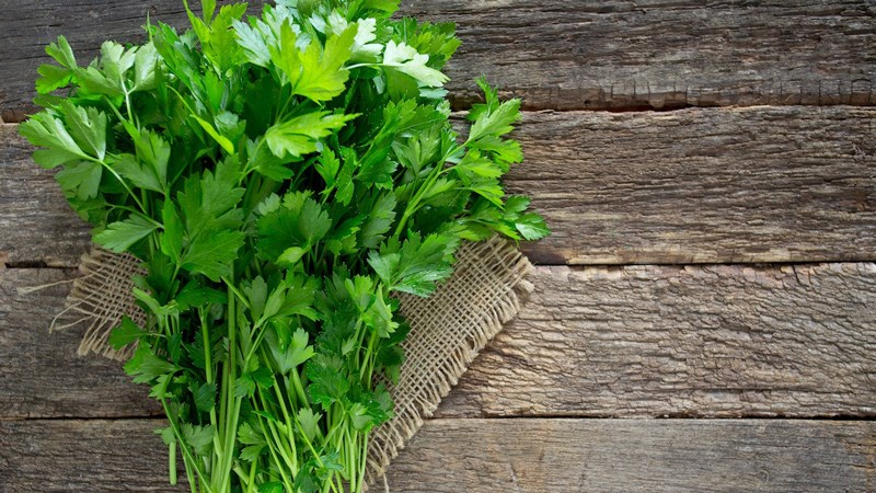 rau Parsley