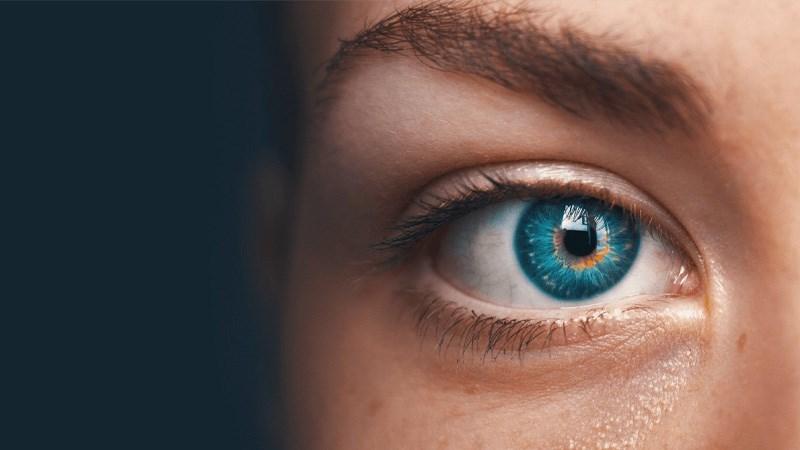 Hỗ trợ cho sức khỏe mắt