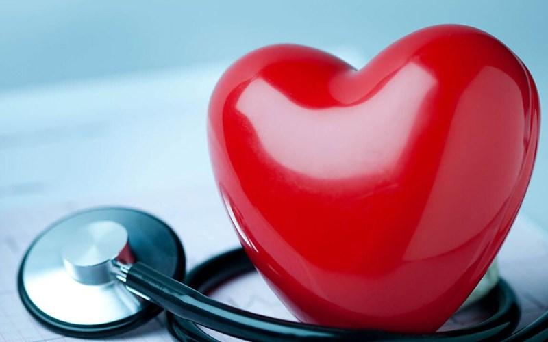 Vôi hỗ trợ sức khỏe tim mạch