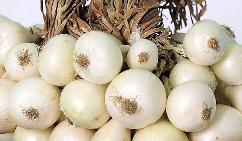 Hành tây vỏ trắng (white onion)