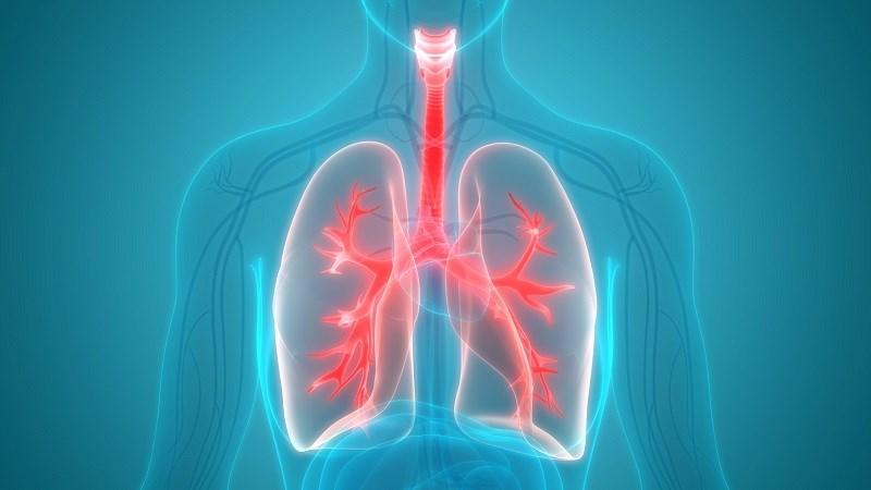 Uống nước nóng giúp giải độc cơ thể