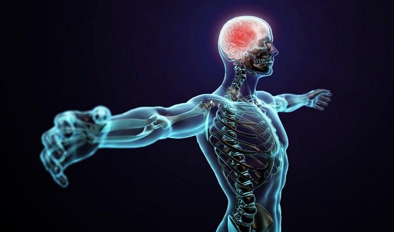 Uống nước nóng cải thiện chức năng của hệ thần kinh trung ương