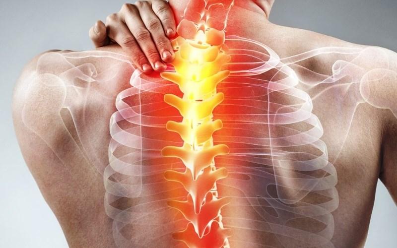 Oregano giúp giảm viêm hiệu quả